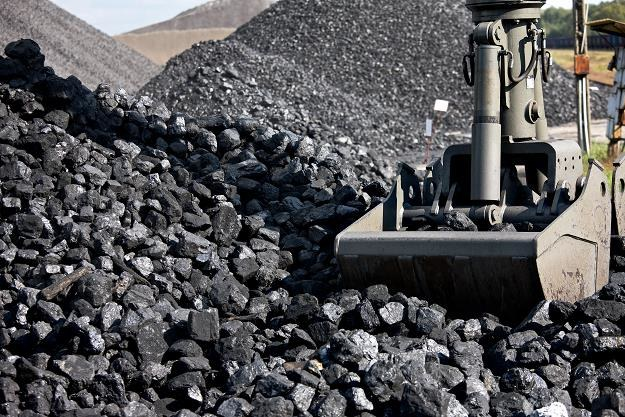 """""""Czarne złoto"""" pozostanie głównym surowcem do produkcji energii na świecie /©123RF/PICSEL"""