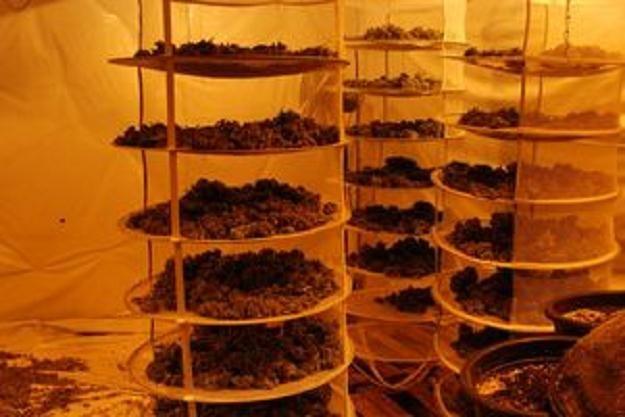 Czarnorynkowa wartość narkotyków to milion złotych /RMF