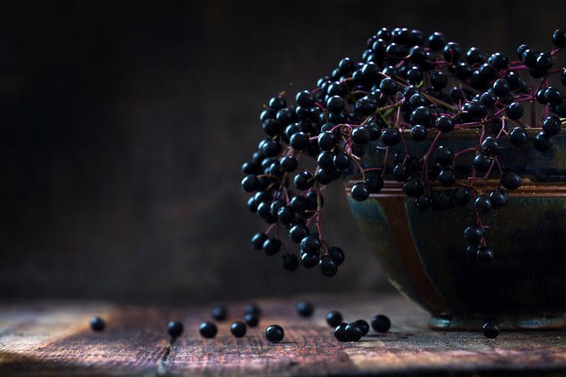 Czarny bez /©123RF/PICSEL