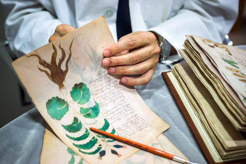 Czarodziej i alchemik John Dee - niewykluczone, że to on sfabrykował manuskrypt i sprzedał go cesarzowi Rudolfowi II / CESAR MANSO /East News