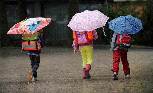 Czeka nas chłodny i mokry tydzień /DPA/Uwe Zucchi /PAP