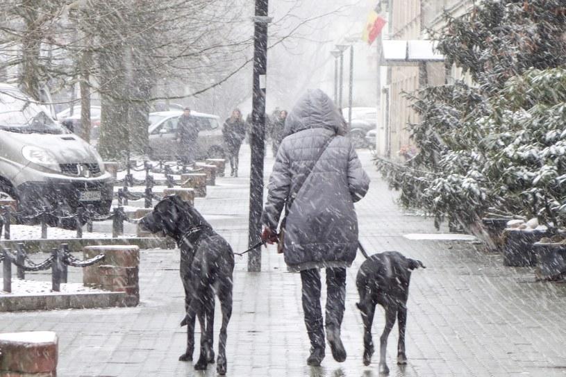 Czeka nas drastyczna zmiana temperatury /Piotr Kamionka /Reporter