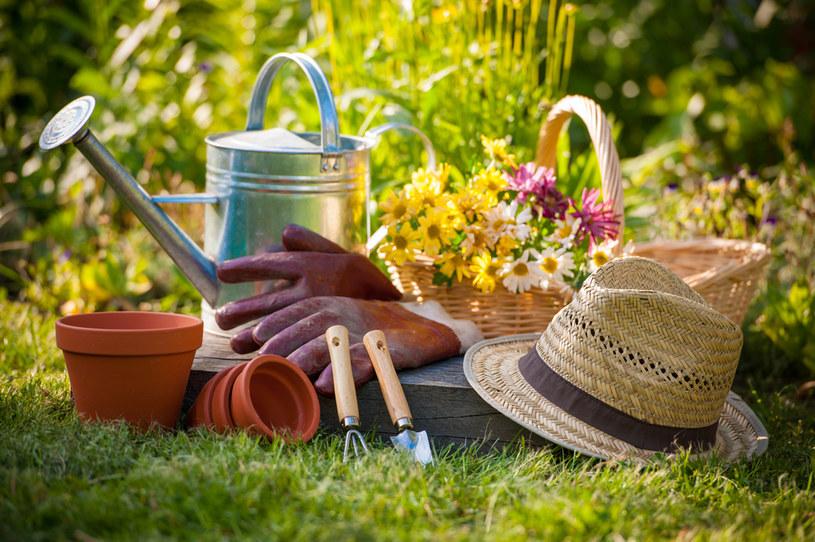 Czerwiec to dobry czas na uporządkowanie ogródka /123RF/PICSEL