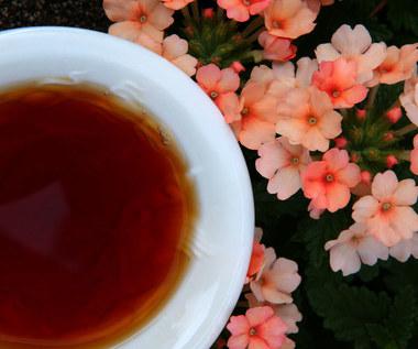 Czerwona herbata: Właściwości i zastosowania