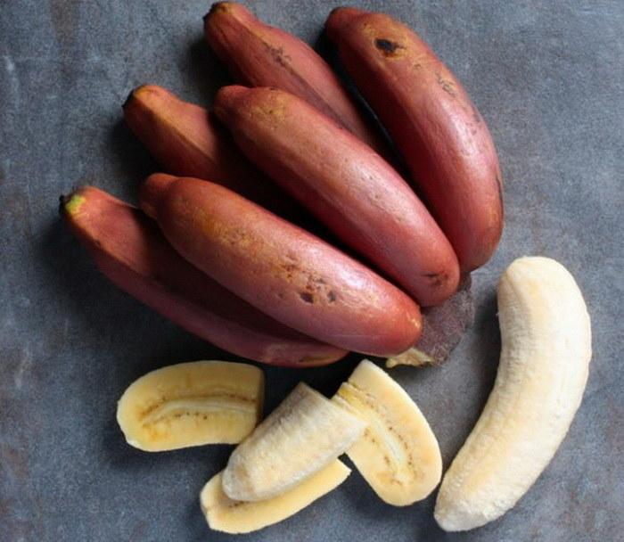 czerwone banany a zdrowie /© Photogenica