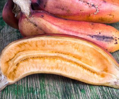 Czerwone banany: Bogate źródło przeciwutleniaczy i błonnika