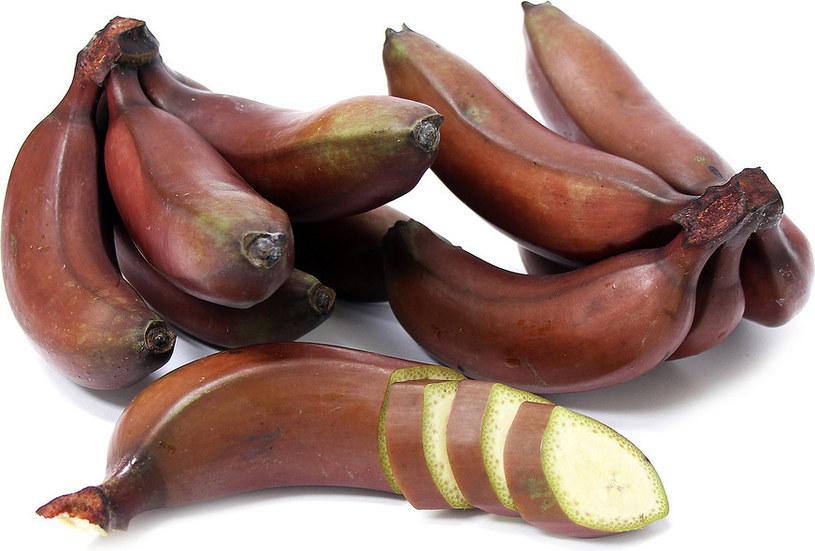 czerwone banany właściwości odżywcze /© Photogenica