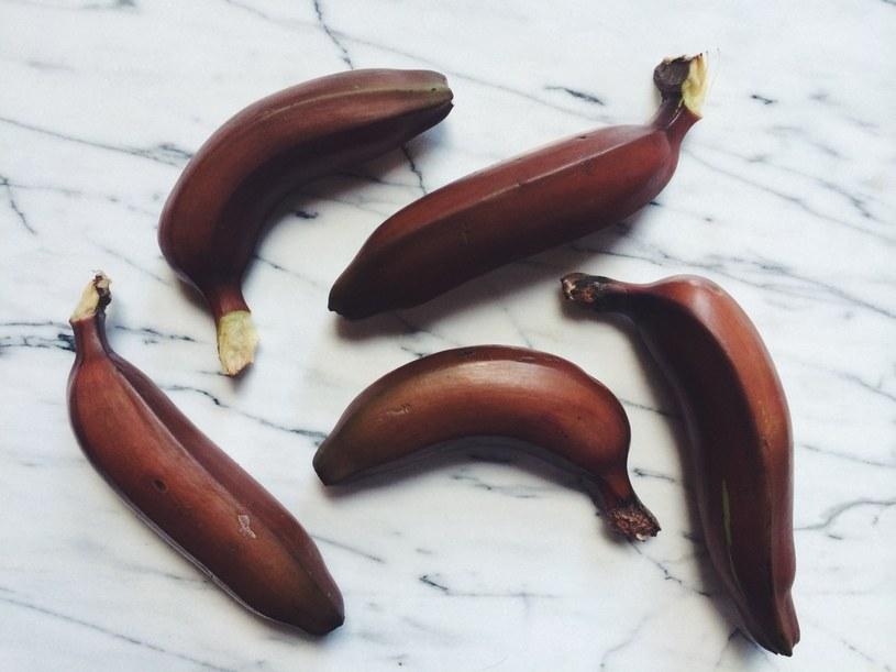 czerwone banany /© Photogenica