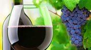 Czerwone wino zamiast siłowni?