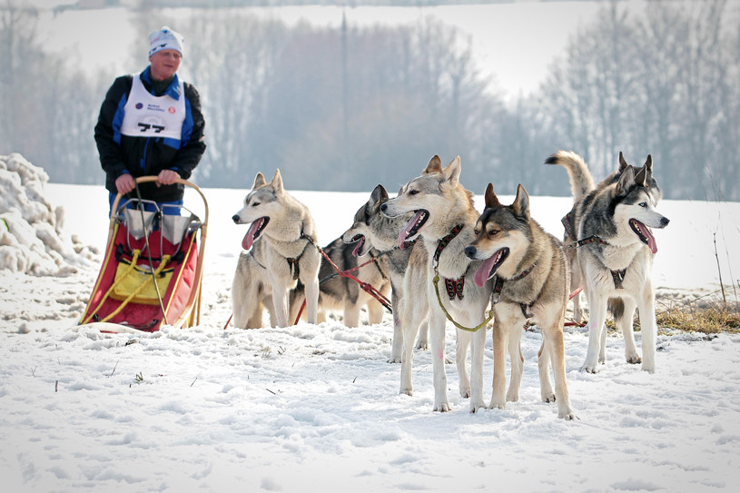 Czesi potrafią zadbać nie tylko o narciarzy, ale o wszystkich miłośników zimowego wypoczynku /materiały prasowe