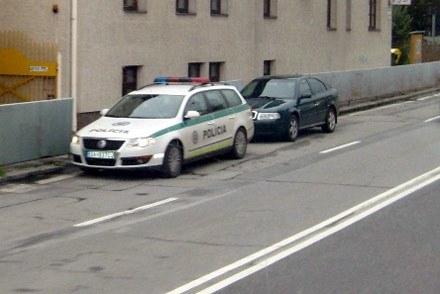Czeska  policja też jest groźna /INTERIA.PL