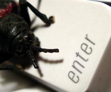 Czeski robak czyha na dane internautów