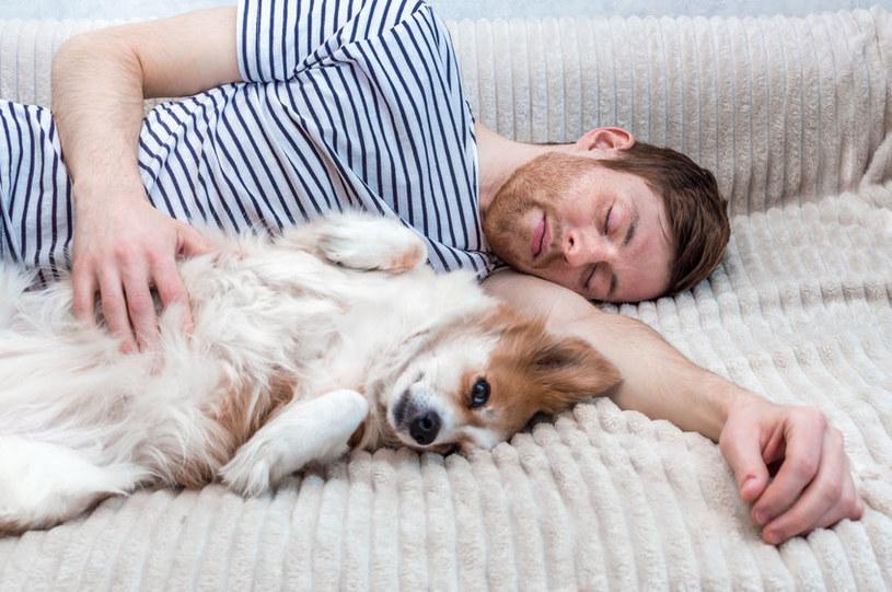 Często nie zdajemy sobie sprawy z wielu zalet posiadania psa /123RF/PICSEL