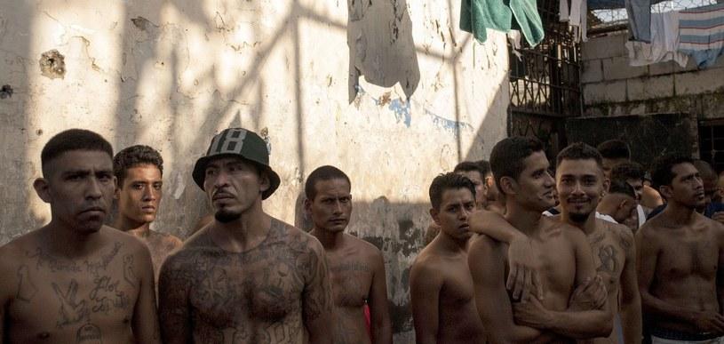 Członkowie gangu atakują całą chmarą, siejąc spustoszenie /AFP