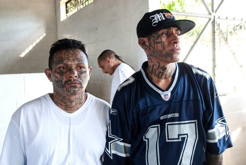 Członkowie gangu muszą wypełniać wszystkie zlecenia. Kto nie przestrzega zasad - jest zabijany. /AFP
