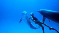 """""""Człowiek delfin"""" [trailer]"""