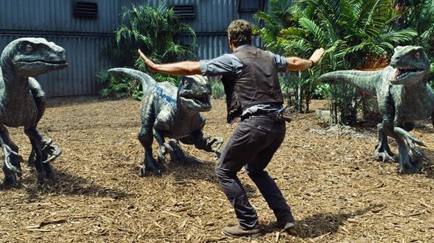 """Człowiek kontra welociraptor. Chris Pratt w scenie z filmu """"Jurassic World"""" /materiały prasowe"""