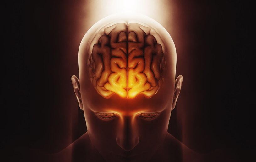 """""""Człowiek korzysta tylko 10 proc. potencjału swojego mózgu"""" - to popularny mit /123RF/PICSEL"""