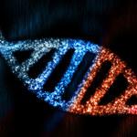 Człowiek ma ponad 100 obcych genów