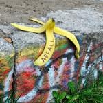Człowiek przebrany za niedźwiedzia na skórce od banana, czyli tegoroczne Ig Noble