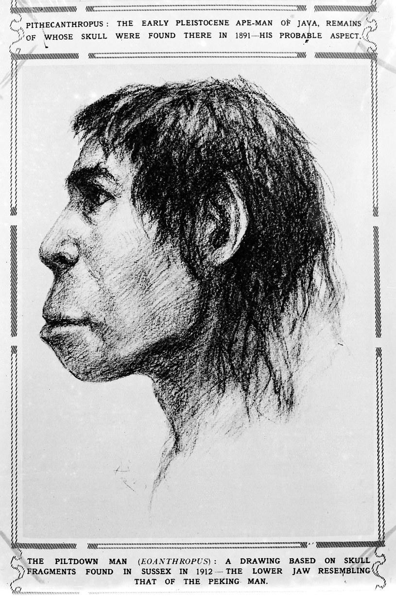 Człowiek z Piltdown na rysunku z epoki /Wikimedia Commons /domena publiczna