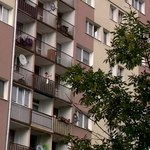 Czterolatek wypadł z okna na szóstym piętrze. Jego babcia usłyszała zarzut