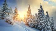 Cztery zalety naturalnego światła
