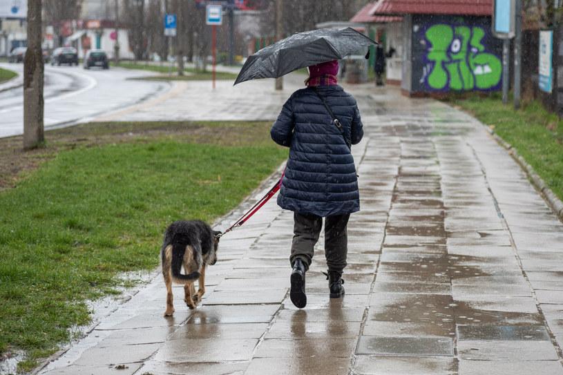 Czwartek zapowiada się deszczowo /ARKADIUSZ ZIOLEK/East News /East News