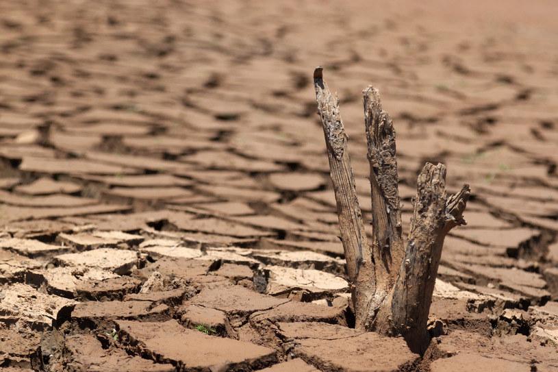 Czy 2021 r. bedzie rokiem suszy? /123RF/PICSEL
