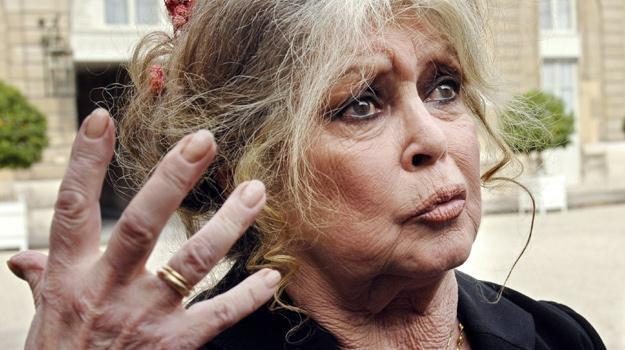 """Czy aktorka ucieknie z kraju, który jest """"niczym więcej jak tylko cmentarzem dla zwierząt""""? /AFP"""