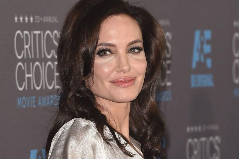 Czy Angelina Jolie naprawdę pożegna się z aktorstwem? /Getty Images