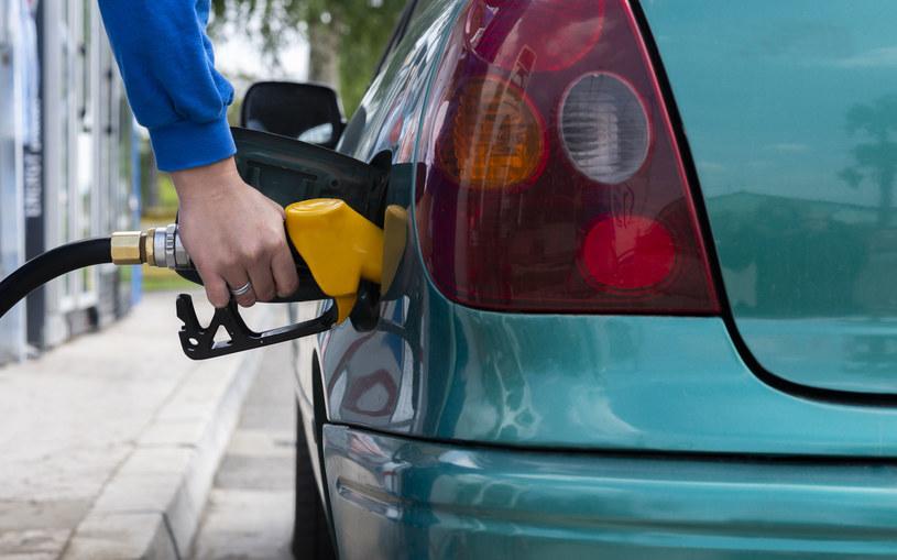 Czy czeka nas rewolucja w biopaliwach? /123RF/PICSEL