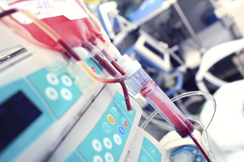 Czy dieta powinno się dobierać pod grupę krwi? /123RF/PICSEL