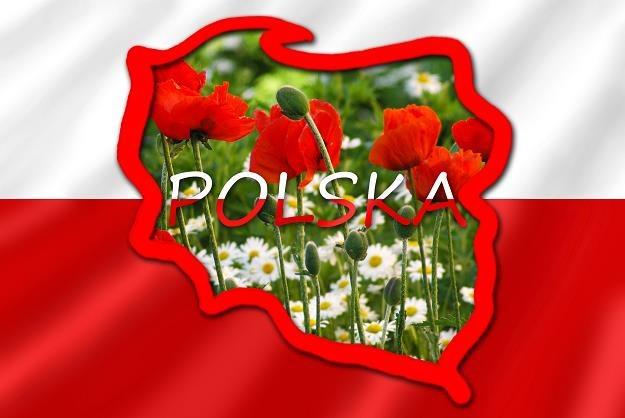 Czy do roku 2020 polska gospodarka wejdzie do światowej pierwszej ligi? /©123RF/PICSEL