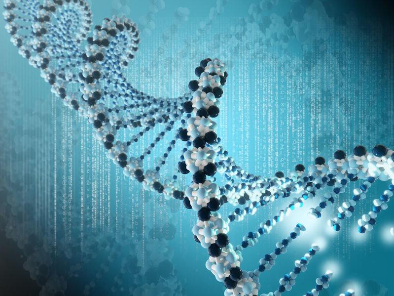 Czy edycja genów stała się faktem? /123RF/PICSEL