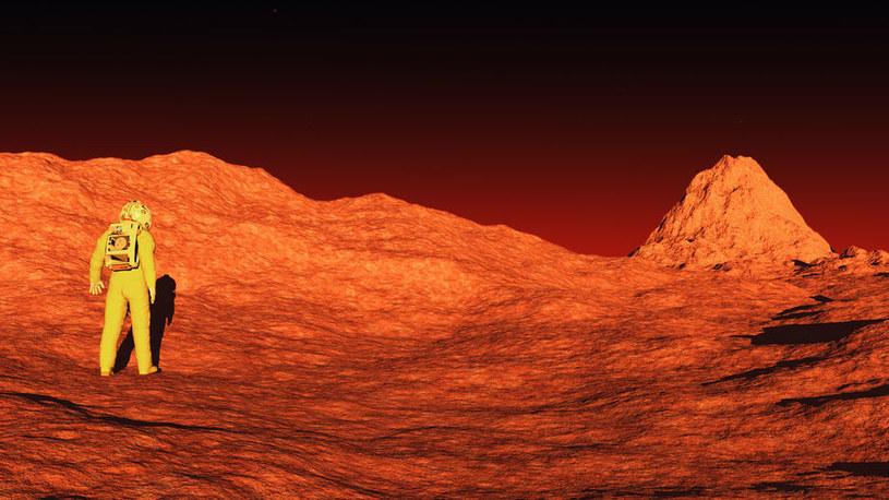 Czy Elon Musk zabierze nas na Marsa? On sam twierdzi, że chce umrzeć na powierzchni Czerwonej Planety /123RF/PICSEL