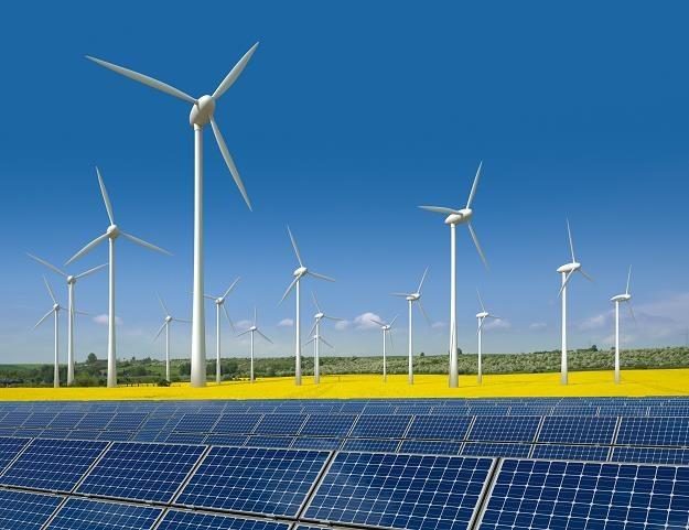 Czy energia z OZE trafi do polskich domów? Potrzeba rozbudowy sieci przesyłowych /©123RF/PICSEL
