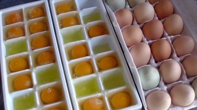 Czy jajka można mrozić /© Photogenica