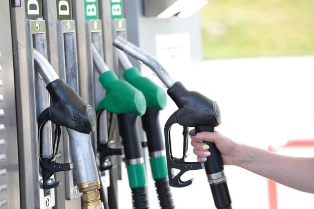 Czy jest sens dopłacać do paliw premium? /Piotr Jędzura /Reporter