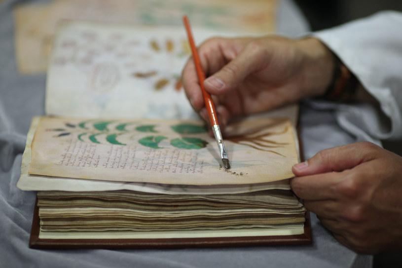 Czy kiedykolwiek poznamy prawdę dotyczącą manuskryptu Wojnicza? / CESAR MANSO /East News