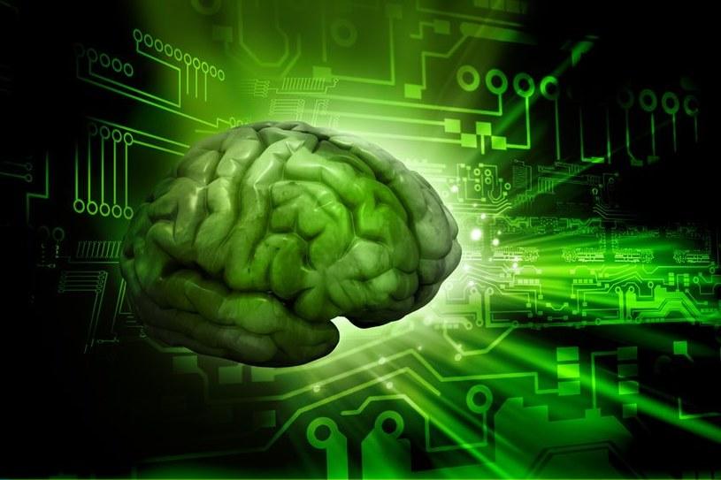 Czy kiedyś naukowcom uda się stworzyć sztuczny mózg? /123RF/PICSEL