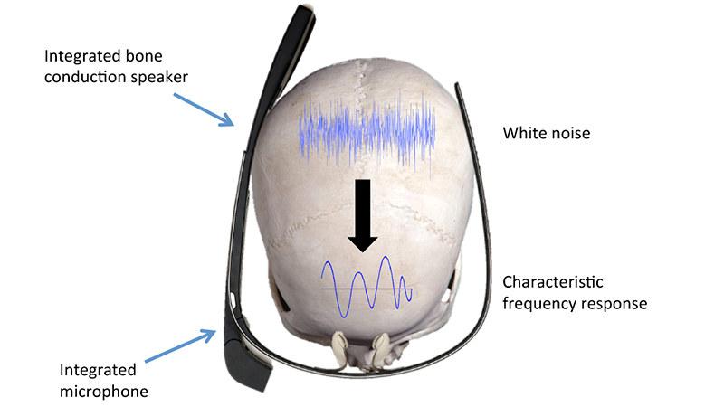 Czy kiedyś weryfikacja tożsamości na podstawie wibracji czaszki będzie możliwa? /materiały prasowe