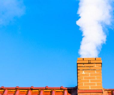 Czy kolejne miasta wprowadzą zakaz palenia węglem?