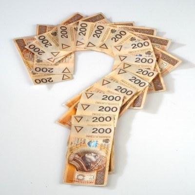 Czy kredyt w euro będzie tańszy od kredytu z dopłatą? /© Bauer