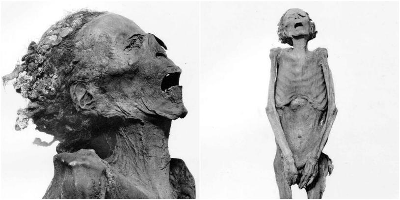 Czy krzycząca mumia to ciało księcia Pentewere? /materiały prasowe