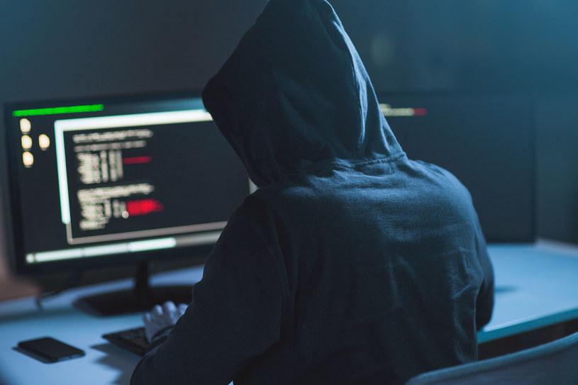 Czy młodociany haker wykorzysta szansę, jaką daje mu prokuratura? /123RF/PICSEL