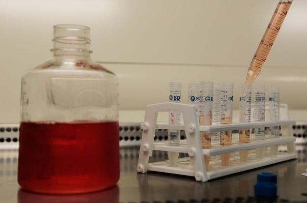 Czy możliwe jest opracowanie skutecznej szczepionki przeciwko AIDS? /AFP
