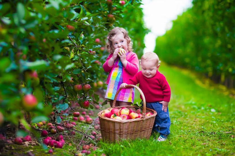 Czy można jeść niemyte warzywa i owoce? /©123RF/PICSEL