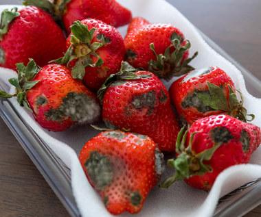 Czy można jeść spleśniałe owoce?