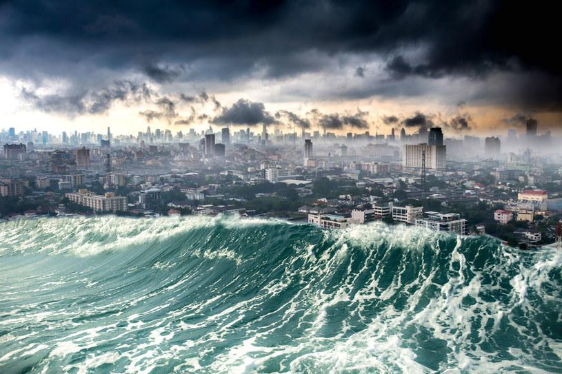 Czy można przewidzieć tsunami? /123RF/PICSEL